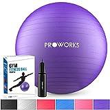 Proworks Gymnastikball 55cm Heavy Duty Sitzball für Sport Physiotherapie Schwangerschaft Yoga...