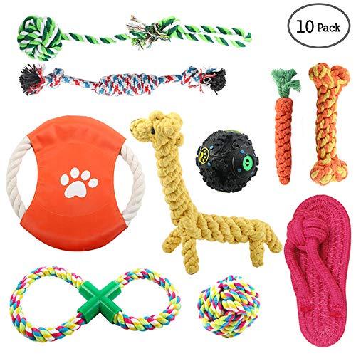 10Stk Hunde Spielzeug für Kleine Hunde Hundegeburtstraining, Dog Toy,Cotton Puppies Rope Welpenspielzeug Hund