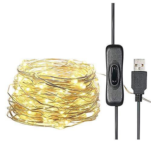 FASESH Fairy Lights USB Plug in Powered Fairy Lights LED Light IP65 Waterproof Outdoor/Indoor Copper String Lights Wire Warm Christmas Tree Decoration for Bedroom, Wall, Party, Wedding (12m 120 LED)