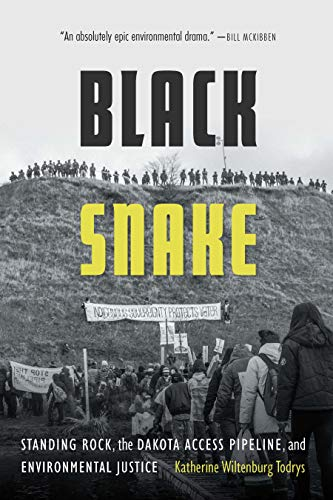 Image of Black Snake: Standing Rock, the Dakota Access Pipeline, and Environmental Justice