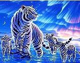 Pintura Por Números Niños Adultos Resumen Cabeza De Caballo Animal Colorido 40X50Cm Lienzo De Lino...