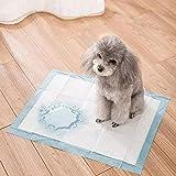 Heritage Pet Products – Tapis d'apprentissage de la propreté pour chiot, 60x45cm