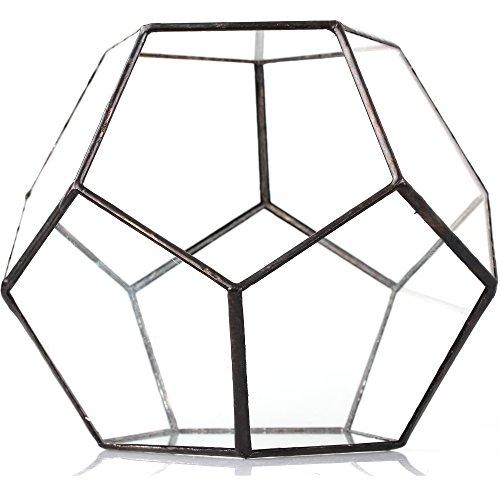 Transparentes fünfeckiges Dodekaeder Glas, Terrarium, auch für Sukkulenten , farblos, Schwarz - 4