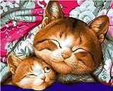 Diy Pintura Digital Pintura Digital Adulto Gato Durmiendo Lienzo Digital Graffiti Set Decoración De Boda Imagen Artística Regalo De Vacaciones