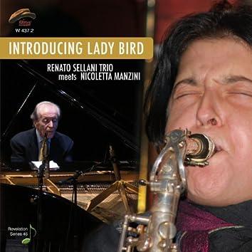 Introducing Lady Bird