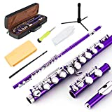 EASTROCK Closed Hole Flutes C 16 Key for Beginner, Kids, Student -Nickel Flute with Case Stand and Cleaning kit (Purple)