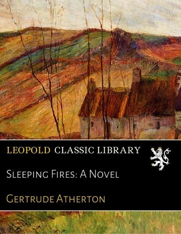 飽和する支払うシャットSleeping Fires: A Novel