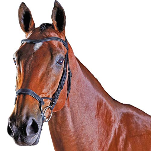 Collegiate Comfitec Training Bridle Black Cob