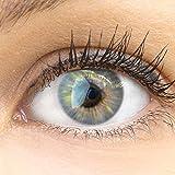 GLAMLENS Sevilla Gray grau + Behälter | Sehr stark deckende natürliche graue Kontaktlinsen farbig...
