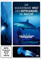 Die wunderbare Welt des Mittelmeers bei Nacht