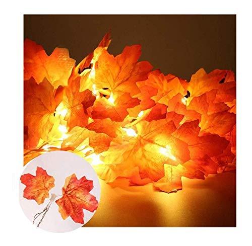 ZBM-ZBM Regenbooglampen, met led-binnenverlichting, waterdichte buitenlampen, meteorlampen, douche, knipperen, lichtketting, outdoor, tuinhuis, voor Kerstmis, ramen, kerstboom