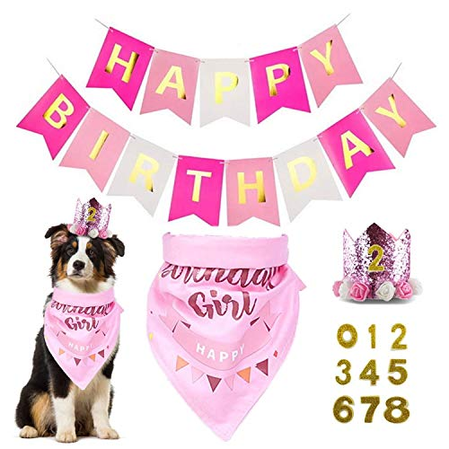 Assletes Dog Birthday Bandana Girl - Dog Birthday Party Supplies with Hat & Dog Happy Birthday Banner and Dogs First Birthday Party Crown and Triangle Scarf, Doggie Birthday Party Supplies Decorations