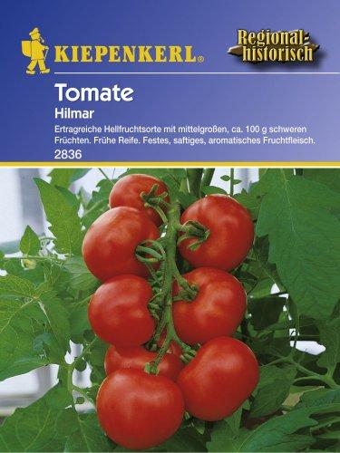 Sperli Gemüsesamen Tomaten Hilmar, grün