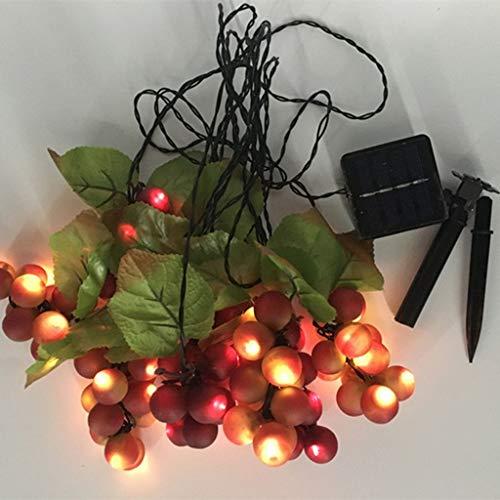 Solar Lichterkette, 80LED Traube Lichterkette Solar Lichterkette Für Indoor Außen Festival Dekorative Lichter-Warmweiß