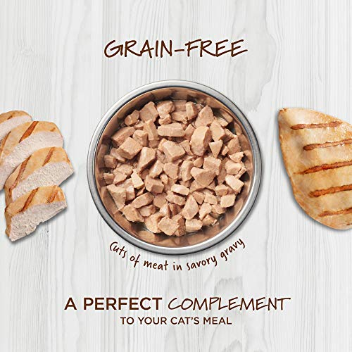 Instinct Healthy Cravings Grain Free Real Chicken Recipe Natural Wet Cat Food Topper by Nature's Variety, 3 oz. Pouches (Case of 24)