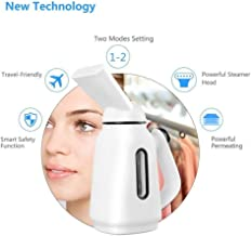 Handheld Steam Iron High Temperature Sterilization Steaming Face Beauty Air Humidification Mini Steam Brush for Home/Travel/Office Travel
