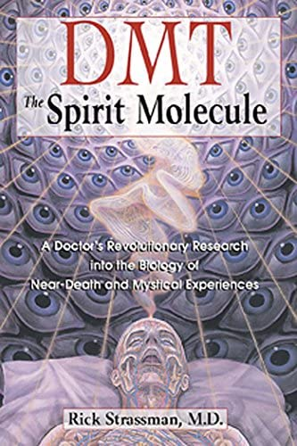 DMT The Spirit Molecule A Doctor s Revolutionary Research into the Biology of Near Death and product image
