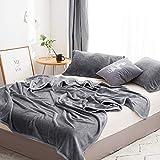 高級フリースブランケット、ホームベッド毛布キングサイズのための冬の350GSM毛布スーパーソフト暖かい厚手の毛布、200センチメートルX 230センチメートル