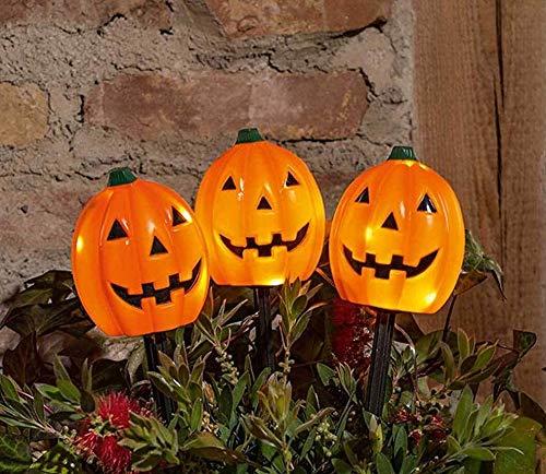 TFH LED tuinstekker pompoen set van 3 oranje Halloween herfstdecoratie decoratie uitgevallen tuindecoratie herfstverlichting