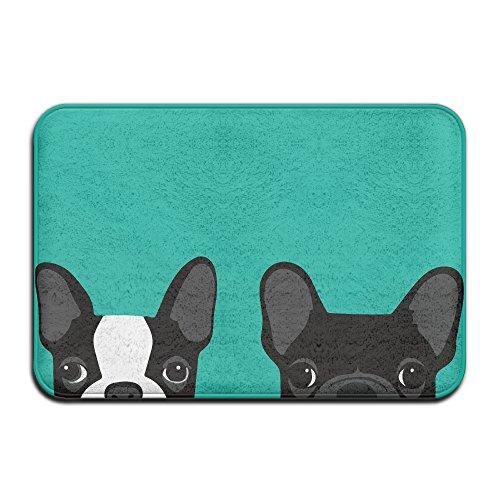 diyabcd Boston Terrier y Bulldog Francés Doormats antideslizante para casa jardín puerta alfombra Felpudo piso almohadillas
