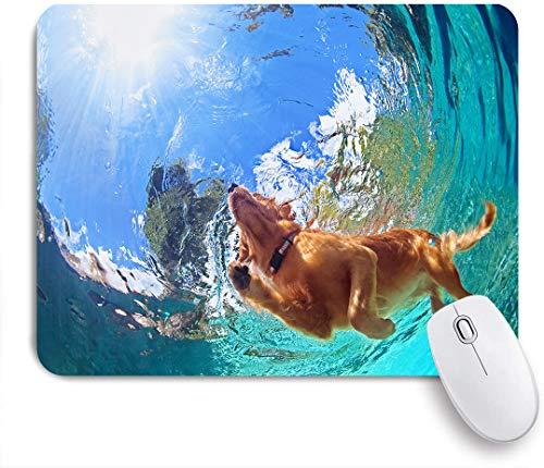 COFEIYISI Fotografía submarina de Golden Labrador Retriever Cachorro en la Piscina al Aire Libre Jugar con diversión - Saltar y bucear en el Fondo,Alfombrilla Raton Alfombrilla Gaming Alfombrilla