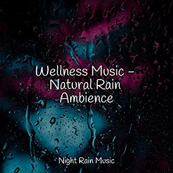 Wellness Music - Natural Rain Ambience