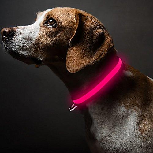 Higo LED Dog Collar, Light Up Pet Dog Collar with...
