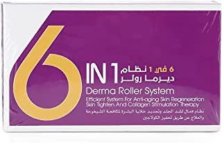 6 in 1 Derma Roller Set 0.5mm 1.0mm 1.5mm 2.0mm Titanium Micro Needles With Travel Case