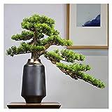 Bonsai Plant Adorno de pino artificial de 23 pulgadas de altura, simulación que acoge al pino, árboles sintéticos para el gabinete de vino y la sala de té (con cepillo de limpieza) Fake Plant Decorati