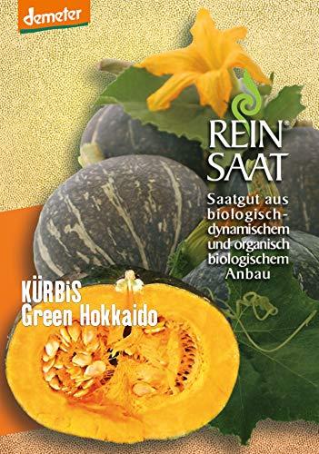 Reinsaat Kü16 Kürbis Green Hokkaido (Bio-Kürbissamen)