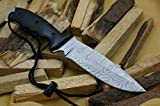 Knife King Model...image