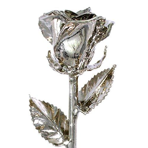 Platinum Dipped Rose