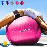 arteesol palla fitness 45cm 55cm 65cm 75cm palla pilates anti-scoppio antiscivolo palla da ginnastica con pompa rapida fitness palestra yoga pilates core training fisioterapia