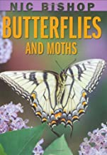 Nic Bishop: Butterflies and Moths by Nic Bishop (March 01,2009)