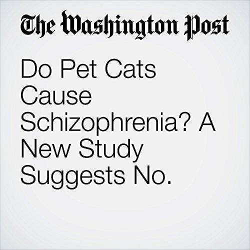 Do Pet Cats Cause Schizophrenia? A New Study Suggests No. copertina