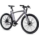 CHRISSON 28 Zoll E-Bike City Bike eOCTANT grau matt - Elektrofahrrad Urban Bike mit Aikema Hinterrad...