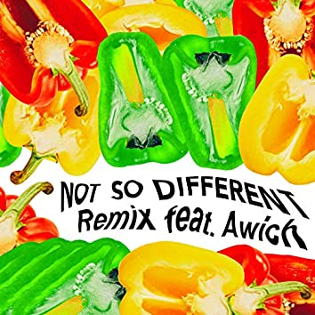 Not So Different (Remix)