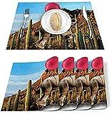 Juego de 4 manteles individuales con diseño de globo rojo de cactus,diseño de elefante,azul cielo y poliéster,resistentes a las manchas,lavable,decoración para el hogar,la cocina,la oficina marrón