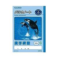 オキナ パリオノート 漢字練習 セミB5判(学用3号) 104字 GA73-3 / 10セット