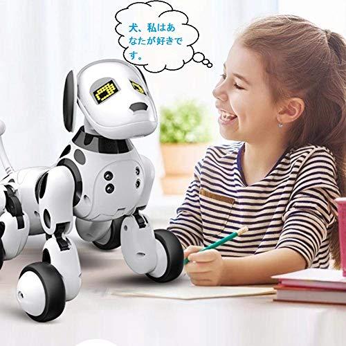 Aukfa『RobotDog』