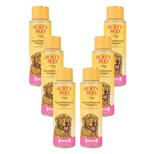 Burt's Bees Natural Hypoallergenic Dog Shampoo|With Shea Butter & Honey|Cruelty Free, Sulfate & Paraben Free, pH Balanced for Dogs - Made in the USA (pack of 6)