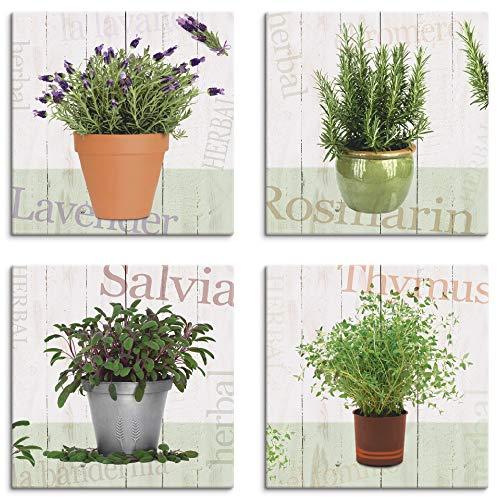 Artland Leinwandbilder auf Holz Wandbild Bild Set 4 teilig je 20x20 cm Quadratisch Natur Pflanzen Creme Kräuter Lavendel Rosmarin Salbei Thymian J6QA