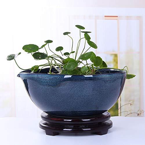 YQGOO Macetas para Plantas hidropónicas de cerámica Grandes para Interiores, macetas para Peces, Sala de Estar, recámaras para decoración de dormitorios con Bandeja (tamaño: 35 cm)