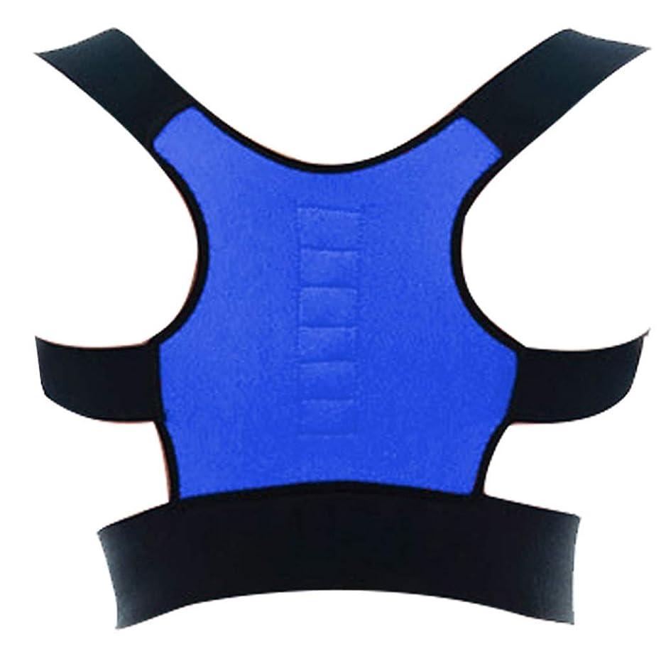 モノグラフ影響到着する姿勢矯正、良好な背中の最適に完全に調整可能なサポート、改善された姿勢と腰痛、男性と女性、成人の子供のための腰椎サポート (Color : Blue)