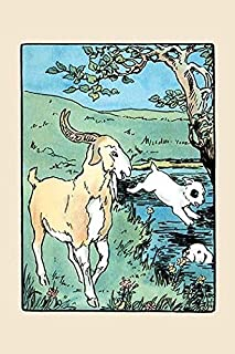 Two fox terriers miss the Billy goat and accidentally go for a swim in the lake An illustration from a series of childrens...