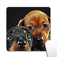 かわいい子犬拡張人間工学に基づいたゲーミングマウスパッド、正方形200x200x3mmマウスパッドカスタムデザインラバースクエア200x200x3mmマウスパッドかわいい子犬