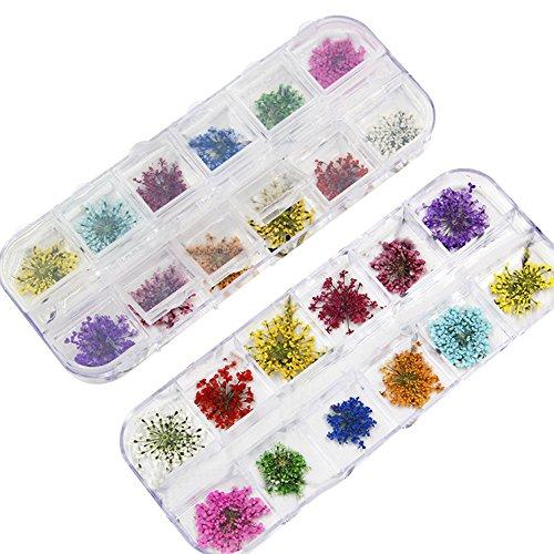 Kentop1 Caja 24 Piezas Pegatinas de Uñas Flores Secas Manicura Uñas Arts Decoración De Moda,5 * 13.5cm