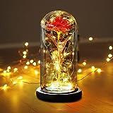 Punvot Rose im Glas, Ewige Rosen, Rose Geschenk Kit, Die Schöne und Das Biest Rose, Geschenk zum Lehrertag, Rose In Glaskuppel, Künstliche Rosefür, Geschenk für Lehrertag Freundin Geburtstag Hochzeit