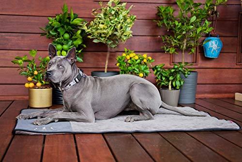 BOUTIQUE ZOO Exclusiv Hundematte mit Isolierung Thermo | Schlafmatte für Große Hunde | Hundebett, Hundekissen, Hundeliege, Matte für Haustier Hundedecke | Farbe: Grau | Große: L