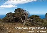 Canarian impressions Tenerife - El Hierro / UK-version (Wall Calendar 2020 DIN A4 Landscape): Landscapes, villages and animals in Tenerife and El Hierro (Monthly calendar, 14 pages ) (Calvendo Nature)